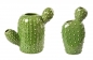 Mobile Preview: Cactus Vase