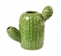 Preview: Cactus Vase - Medium