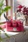 Mobile Preview: Sophie Conran Gubbins Pots - Raspberry