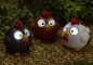 Preview: Bright Eye Happy Hens