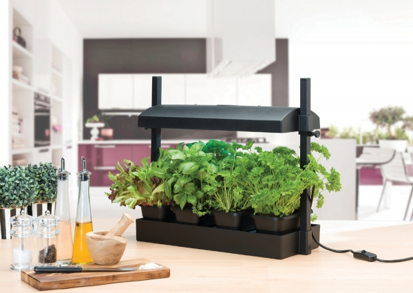 Micro Grow Light Garden Black
