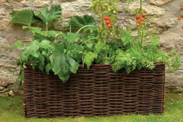Vegetable & Tomato Planter