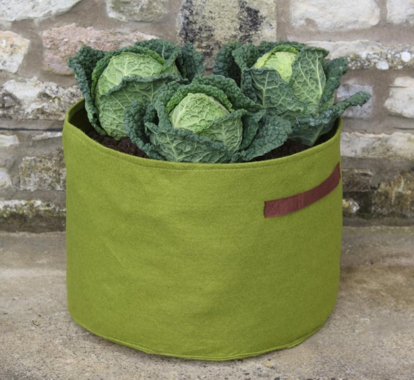 Vigoroot Vegetable Planter
