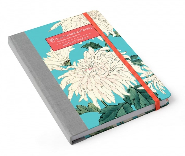 Notebook Chrysanthemum