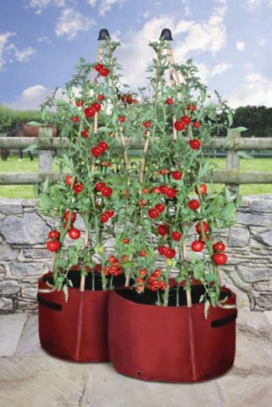 tomaten pflanztaschen 2 st ck british garden. Black Bedroom Furniture Sets. Home Design Ideas