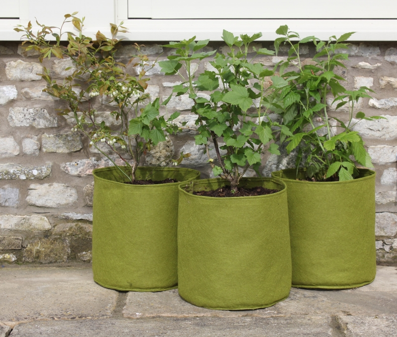 Vigoroot Pots 20L (3er Pack)