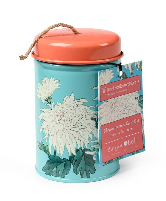 Twine in a Tin Chrysanthemum