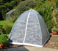 Popadome Insect Cover