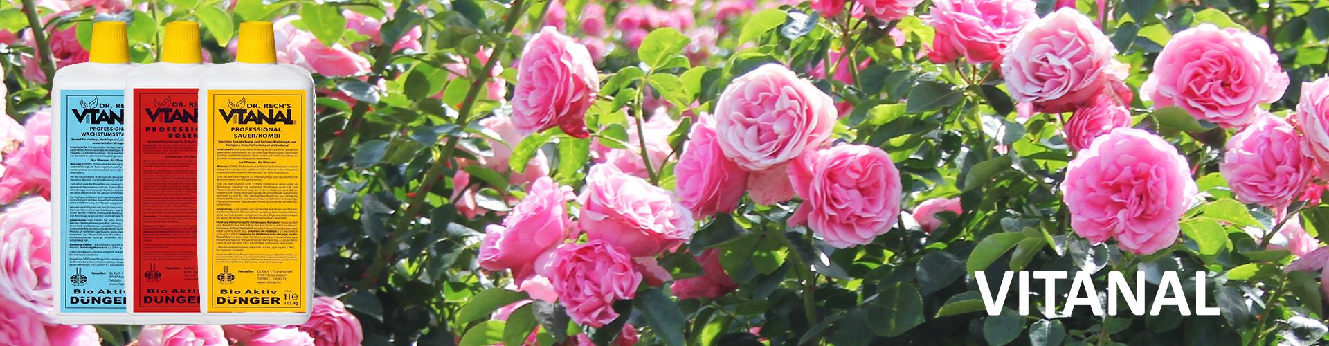 British Garden Englisches Gartenzubehör In Großer Auswahl British